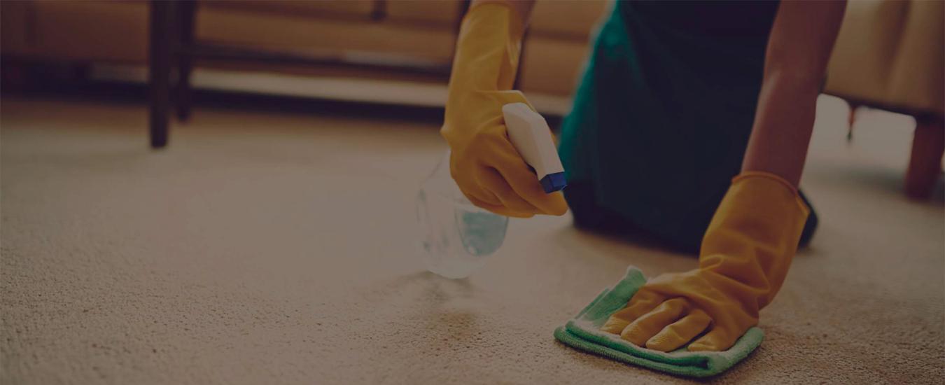 Ardeşen Temizlik Firması